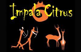 Impala Citrus
